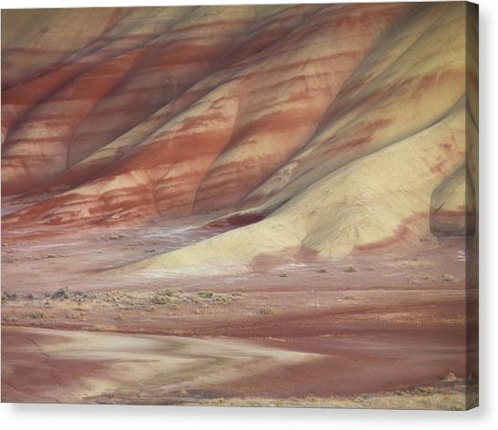Ashes Canvas Print - Hills Painted By Earth Minerals by Leland D Howard