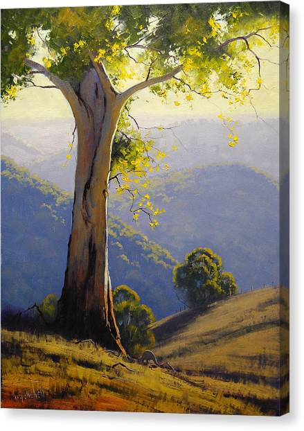 Kangaroo Canvas Print - Hilly Landscape by Graham Gercken