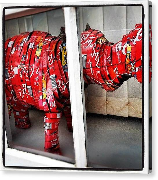 Hippos Canvas Print - Hippo In A Window #coke #cola #tin #art by Robert Campbell