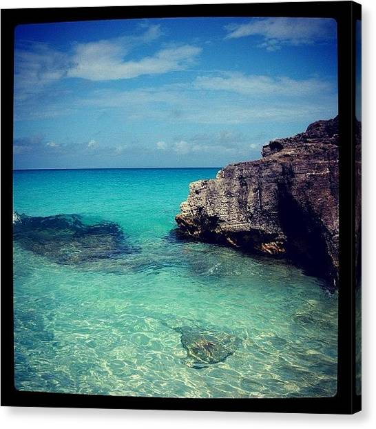 Bahamas Canvas Print - #hipstamatic #instagram #instagood by Kiki Bird