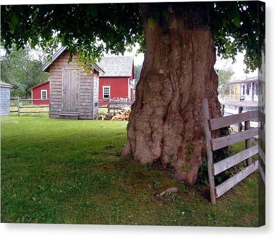 History Sherbrooke Village Nova Scotia Canvas Print