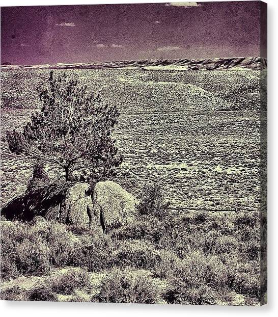 Wyoming Canvas Print - Home, Home On The Range. Central by Chris Bechard