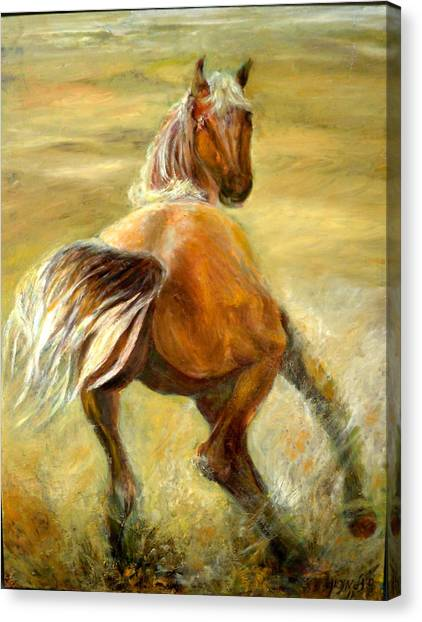 Horse In Field Canvas Print