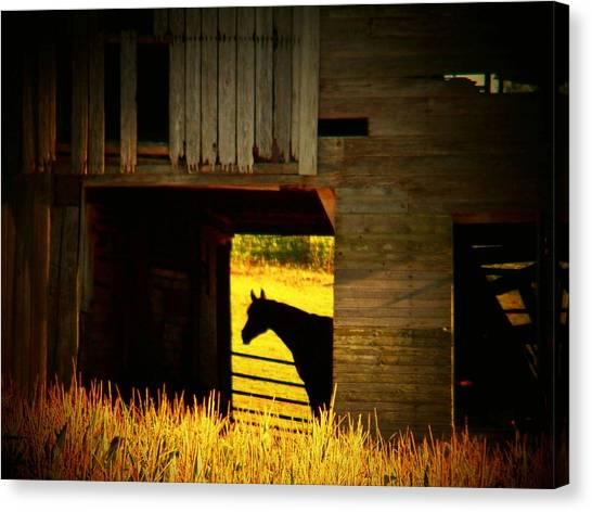 Horse In The Barn Canvas Print by Joyce Kimble Smith