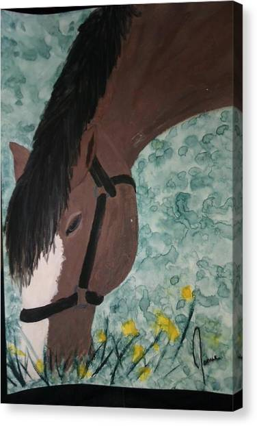 Horse Canvas Print by Jamie Mah