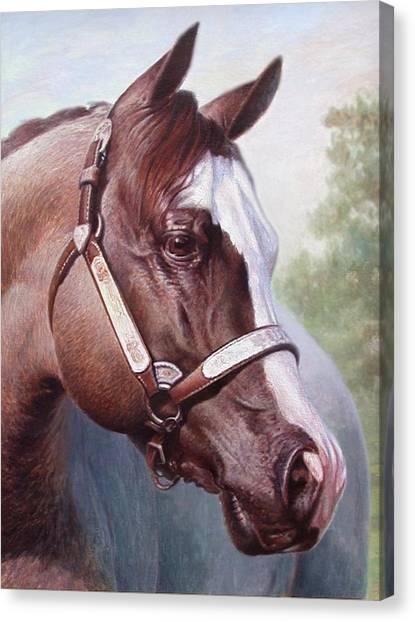 Horse Portrait 2 Canvas Print