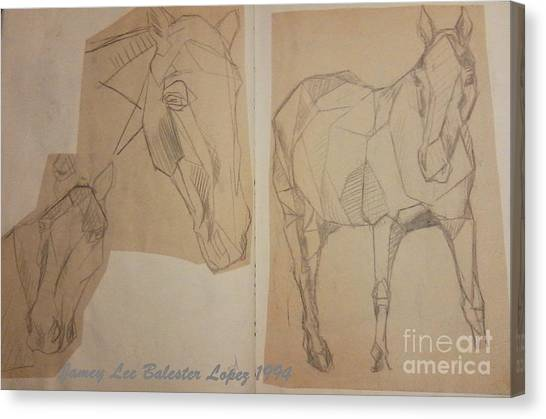 Horse Study Sketchbook Canvas Print by Jamey Balester