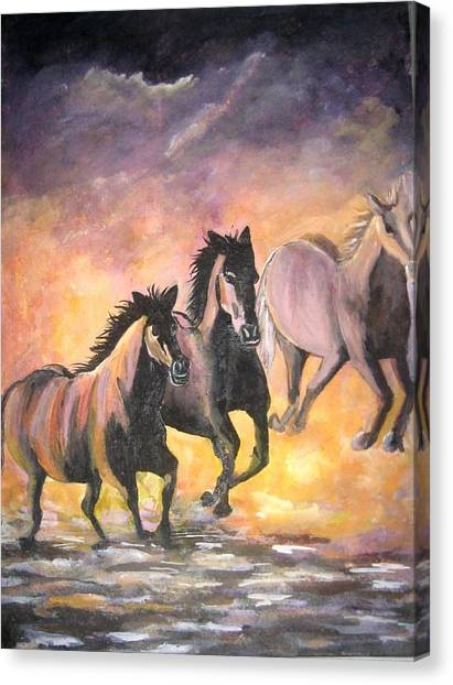 Horses Canvas Print by Usha Rai