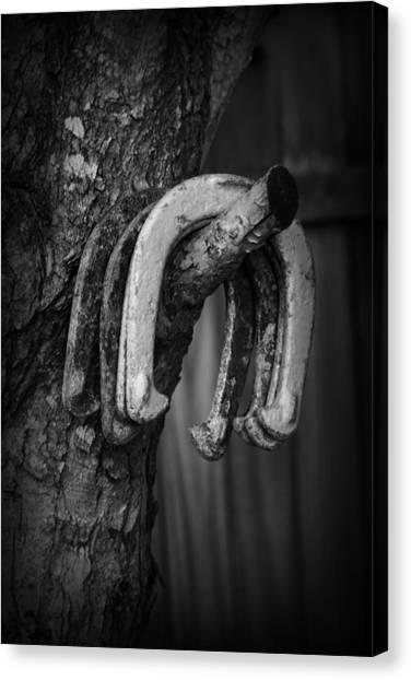 Canvas Print featuring the photograph Horseshoes by Kelly Hazel