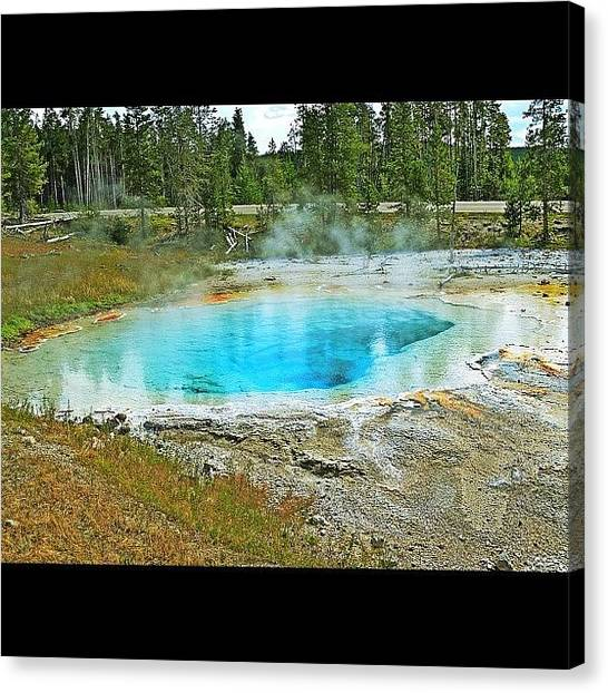 Steam Canvas Print - #hot #water #spring #yellowstone #clear by Marty Gleeson
