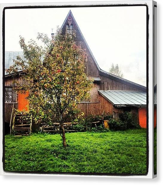Apple Tree Canvas Print - House In The Village Where I Lived For by Michael Goyberg