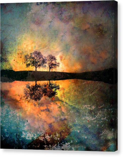 How Trees Reinvent The Morning Canvas Print