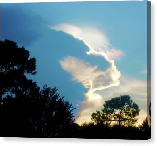 Hungry Cloud Canvas Print by Juliana  Blessington