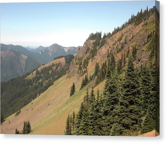 Hurricane Ridge 2 Canvas Print by Fred Russell
