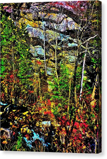 Hyper Grafton 11 Canvas Print by George Ramos