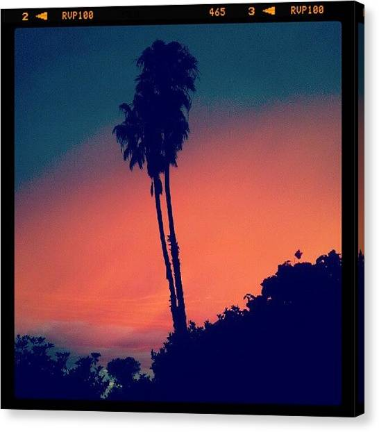 Palm Trees Sunsets Canvas Print - I <3 Rose Avenue! by Claudia Garcia Trejo