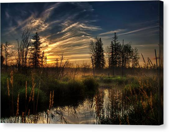 I Believe - Version II Canvas Print by Gary Smith