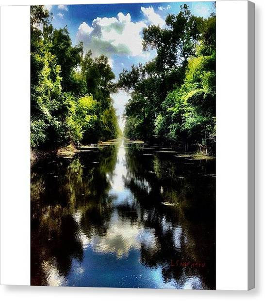 Bayous Canvas Print - I Believe There's A Kind Of Magic On by Lester Starnuto