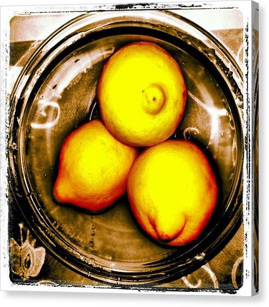 Limes Canvas Print - I Don't Know Who Doesn't Like #lemons by Alicia Greene