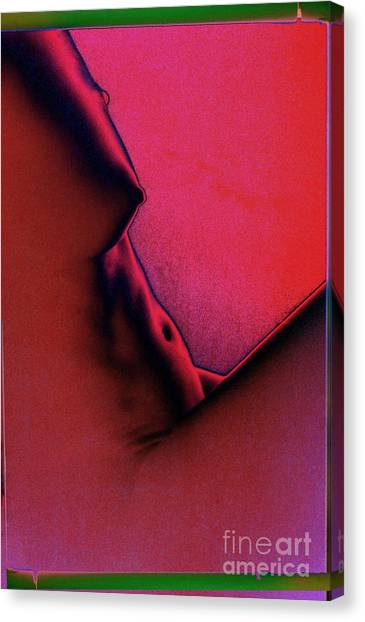 I Dream In Color 1 Canvas Print