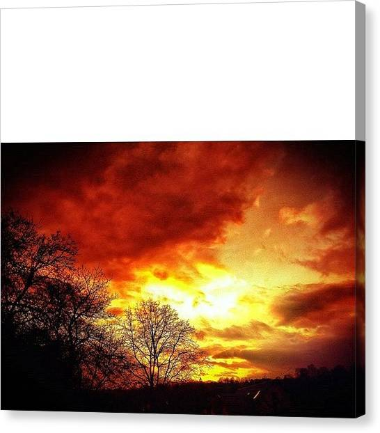 Storks Canvas Print - I Edited The Sky In Red Because I Need by Melanie Stork