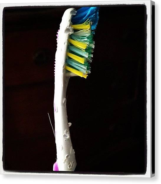 Toothbrush Canvas Print - I Found Your Toothbrush, Honey by Elizabeth Fitzgerald