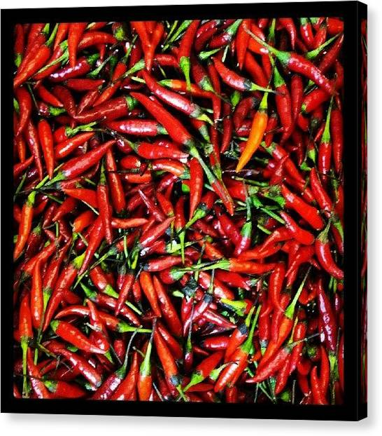 Pepper Canvas Print - I Imagine Hell Being Close To This by Dilaxo Gertron