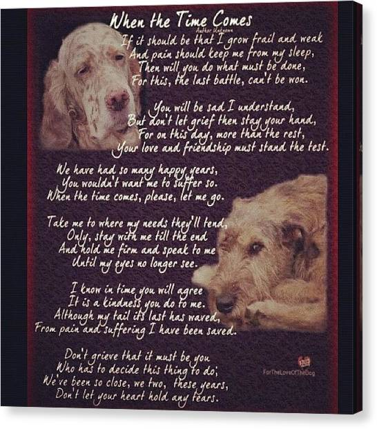 Labrador Retrievers Canvas Print - I Just Had To Share This by Pero San