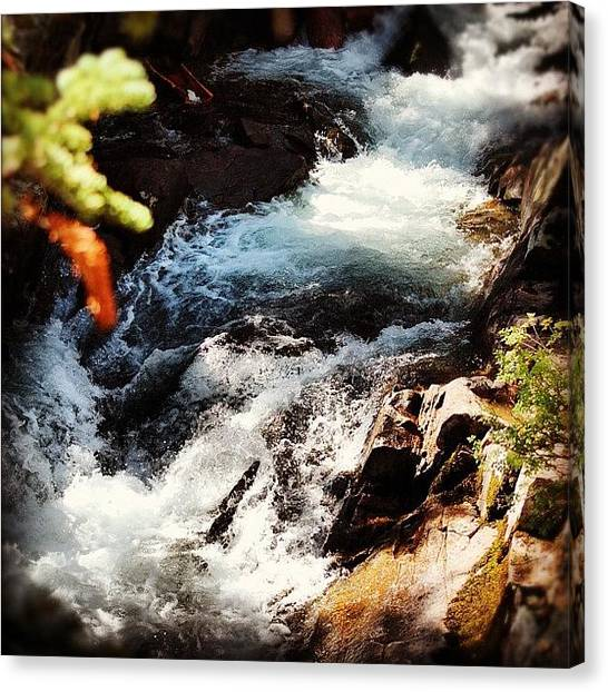 Yellowstone National Park Canvas Print - I Like My Pictures Taken, Not Saved by Brandon Yamaguchi