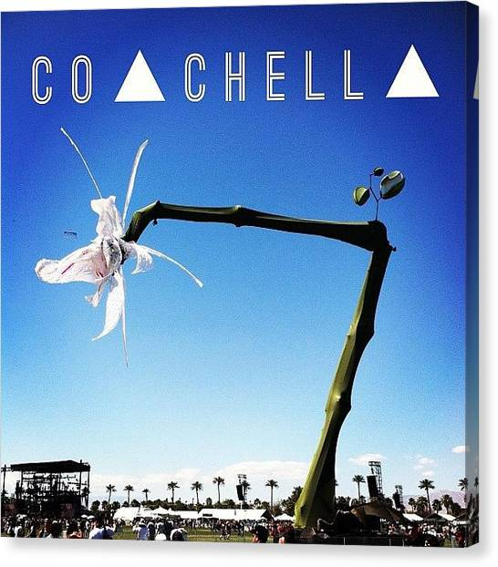 Mermaids Canvas Print - I Miss Coachella Fest 🎶 by Mermaid Lifee