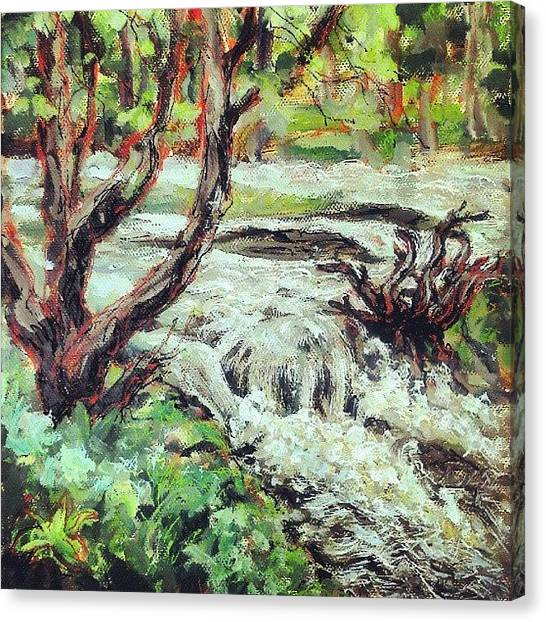 Impressionism Canvas Print - I Think I Finished That #river #hafren by Alexandra Cook