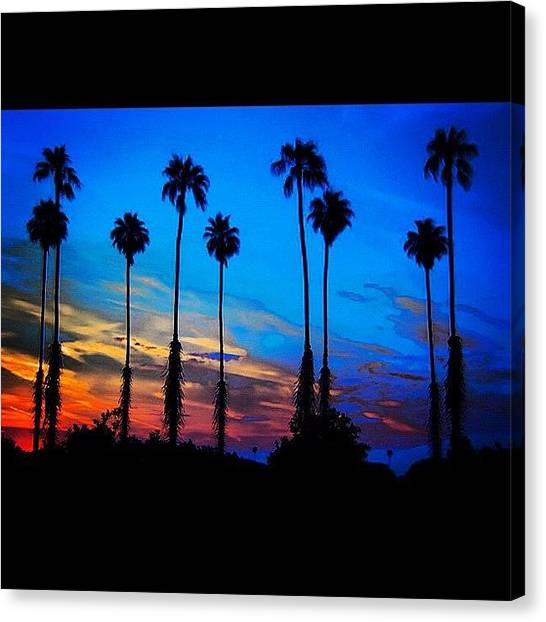 Palm Trees Sunsets Canvas Print - I Will Be Back #home In 5 Days! by Ray Jay