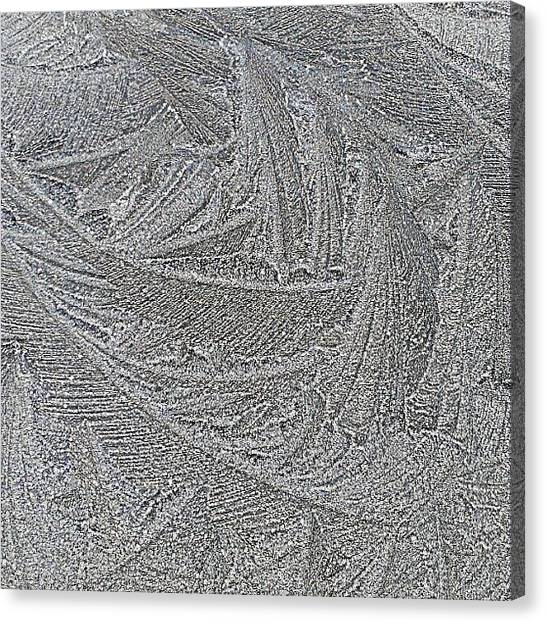 United Kingdom Canvas Print - Ice Pattern This Morning...bit Chilly!! by Amanda Earl