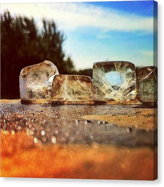 Sunny Canvas Print - Ice by Samuel Gunnell