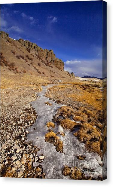 Ice Stream Canvas Print