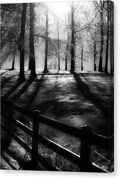 Icy Morning Canvas Print