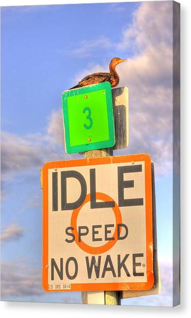 Idle Sitting Canvas Print by Barry R Jones Jr