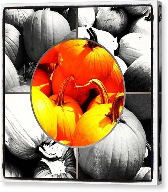 Pumpkins Canvas Print - If You #celebrate Halloween Or  #eat by Alicia Greene