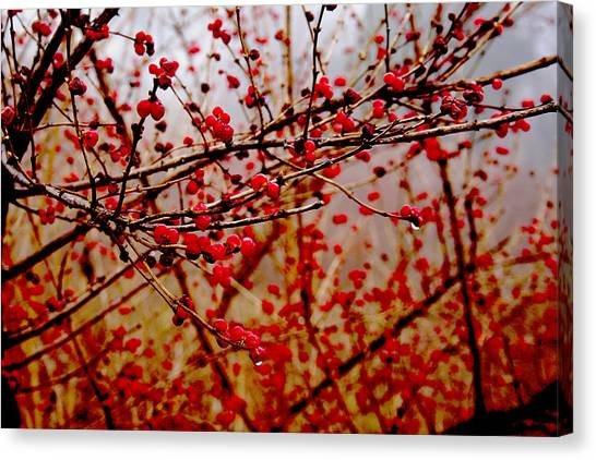 Impression Canvas Print