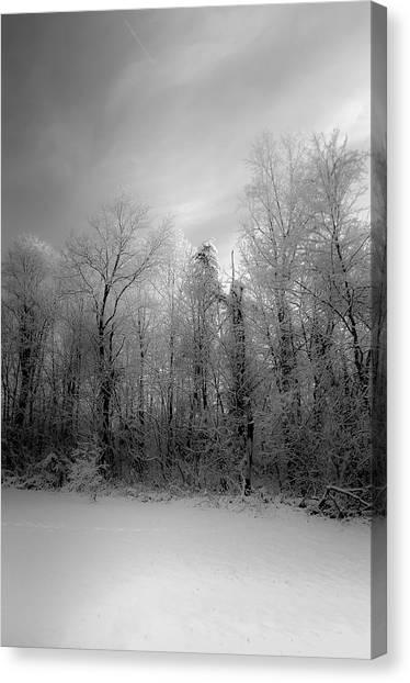 Impressionist Snow Canvas Print