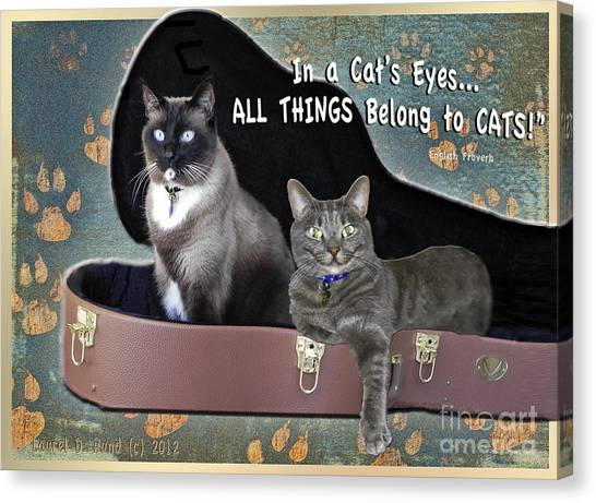 In A Cats Eyes Canvas Print