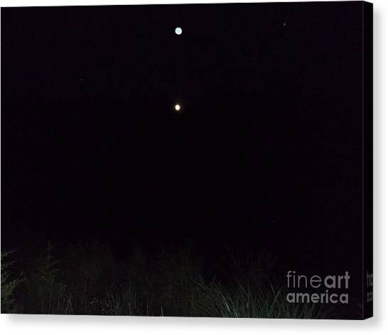 In The Company Of The Moon Canvas Print