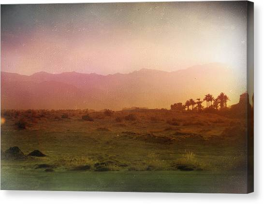 Palm Trees Sunsets Canvas Print - In The End by Laurie Search