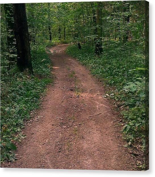 Forest Paths Canvas Print - In The #forest... #woods #path #road by Alexandra Cook