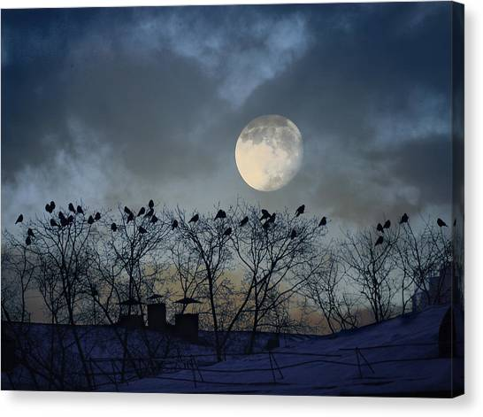 In The Moon Light Canvas Print