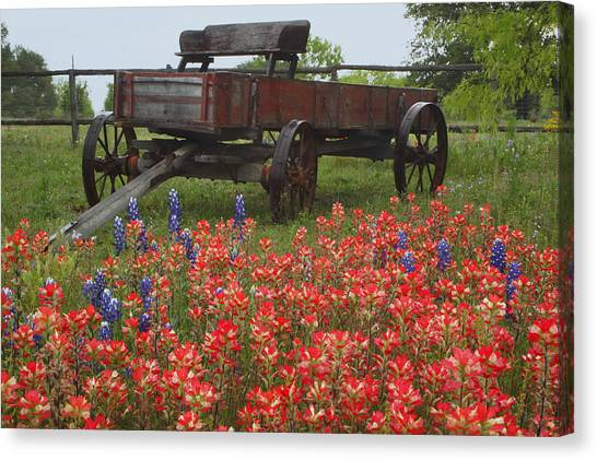 Indian Paintbrush And Wagon Canvas Print