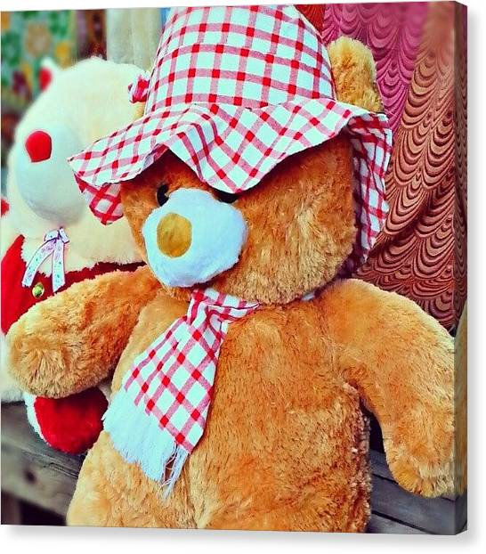 Teddy Bears Canvas Print - Indian Teddy Bear #bear #teddy #chennai by Fotochoice Photography