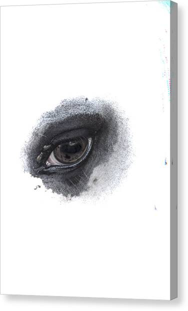 Indys Eye Canvas Print