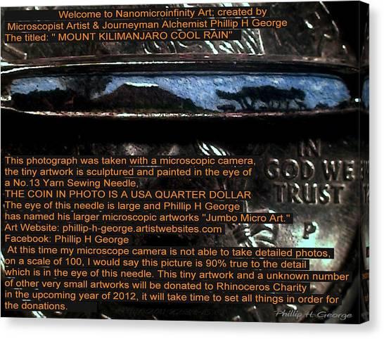 Information Microphotograph  Canvas Print
