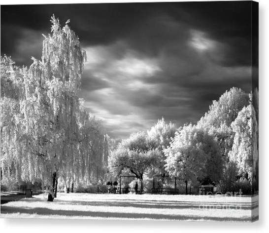 Infra Red Park Canvas Print